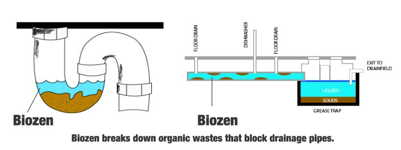 biozen breaks down organic wastes that clogs drain pipes